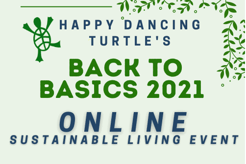 Back to Basics Happy Dancing Turtle