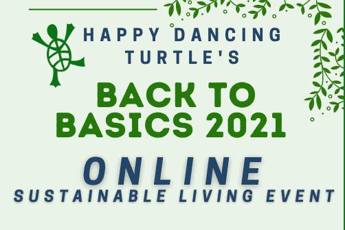 Back to Basics Happy Dancing Turtle